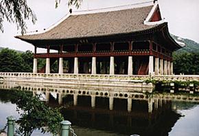 ginseng corean