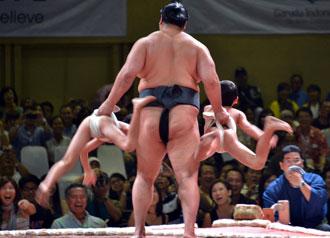 Embracing Japan