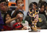 Taiwan Robot Show